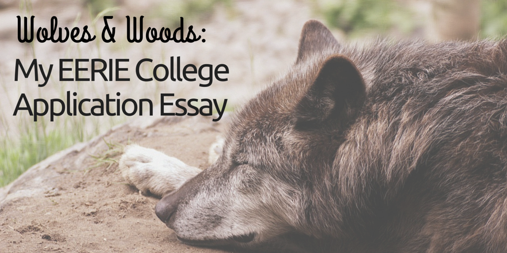 Wolves & Woods: My Eerie College Application Essay